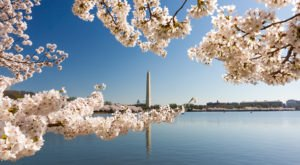 15 Absolutely Amazing Places To Visit In Washington DC