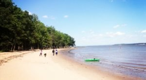 The Hidden Beach Near Washington DC Will Take You A Million Miles Away From It All