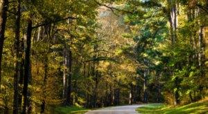 8 National Parks In Mississippi That You've Got To Visit