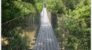 The Terrifying Swinging Bridge In Oklahoma That Will Make Your Stomach Drop