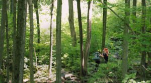 This Hike Is Perfect For An Appalachian Adventure Weekend In Massachusetts