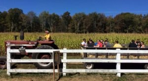 Get Lost In These 8 Awesome Corn Mazes In Rhode Island This Fall