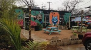 10 Perfect Places In Austin For People Who Hate Crowds