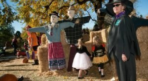 11 Unique Fall Festivals In Denver You Won't Find Anywhere Else