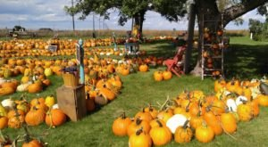 These 8 Charming Pumpkin Patches In South Dakota Are Picture Perfect For A Fall Day