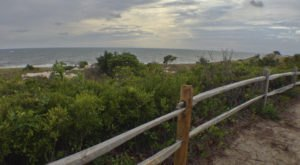 This Just Might Be The Most Beautiful Hike In All Of Delaware