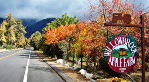These 7 Charming Apple Orchards In Southern California Are Great For A Fall Day
