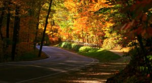 12 Country Roads In Ohio That Are Pure Bliss In The Fall