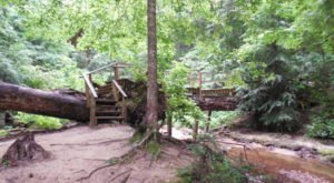 This Hidden Destination In Alabama Is A Secret Only Locals Know About