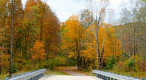 Take These 6 Country Roads Near Pittsburgh For A Gorgeous Scenic Drive