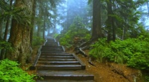 This Easy Half-Mile Hike In Oregon Will Lead You Straight To A Spectacular Lookout