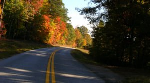 8 Country Roads In Georgia That Are Pure Bliss In The Fall