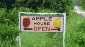 Carver Orchards Is A Charming Apple Orchard In Tennessee That Is Great For A Fall Day