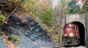 Take This Fall Foliage Train Ride Through Arkansas For A One-Of-A-Kind Experience