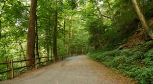 This Just Might Be The Most Beautiful Hike In All Of Pennsylvania
