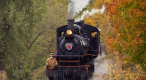 Take This Fall Foliage Train Ride Through New York For A One-Of-A-Kind Experience