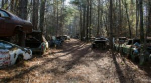 Step Inside This Eerie Graveyard In Georgia Where Automobiles Go To Die