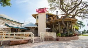 Norwood's Is A Massive Tree House In Florida That Is Actually A Restaurant And You Need To Visit
