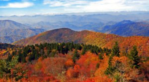 If You Love Fall In North Carolina You'll Love This Year's Prediction About Autumn's Leaves