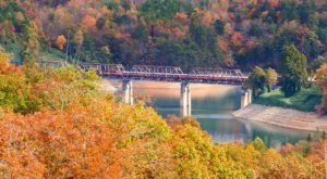 Take This Fall Foliage Train Ride Through North Carolina For A One-Of-A-Kind Experience