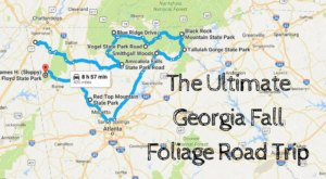 Take This Gorgeous Fall Foliage Road Trip To See Georgia Like Never Before