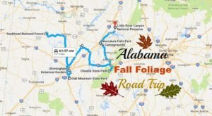 Take A Beautiful Fall Foliage Road Trip To See Alabama Autumn Colors