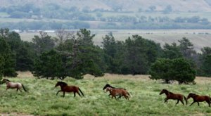 This Natural Sanctuary In South Dakota Is Like Something Out Of The Wild Wild West