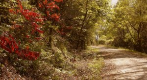 The Nation's Longest Rail Trail Is Right Here In Missouri And It's Positively Marvelous
