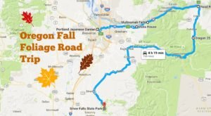 Take A Beautiful Fall Foliage Road Trip To See Oregon Autumn Colors