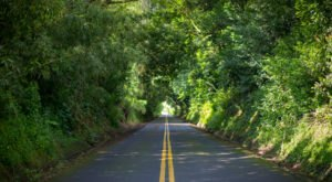 The Story Behind This Haunted Road In Hawaii Is Truly Creepy