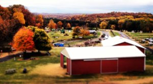 These 10 Charming Apple Orchards Near Washington DC Are Picture Perfect For A Fall Day