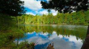 This 1.5 Million Acre Forest in Wisconsin Is Absolutely Magical