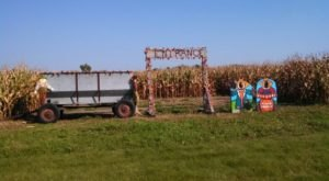 Get Lost In These 21 Awesome Corn Mazes In Minnesota This Fall