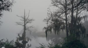 4 Tales Of Louisiana's Rougarou That Will Send Chills Down Your Spine