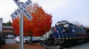 For A One-Of-A-Kind Experience, Take A Fall Foliage Train Ride Through Georgia With The Blue Ridge Scenic Railway