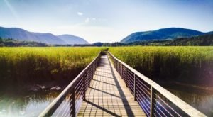This Just Might Be The Most Beautiful Hike In All Of New York