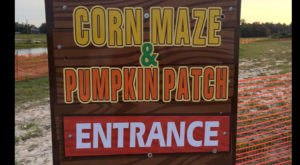Get Lost In These 10 Awesome Corn Mazes In South Carolina This Fall
