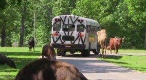 This Hidden Destination In Missouri Is A Secret Only Locals Know About