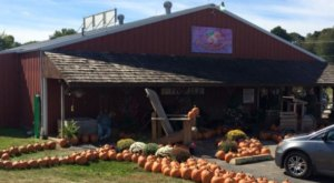 These 9 Charming Apple Orchards In Missouri Are Great For A Fall Day
