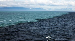 This Strange Phenomenon Happening In The Gulf Of Alaska Needs To Be Seen To Be Believed