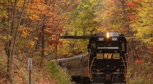 Take This Fall Foliage Train Ride Near Washington DC For A One-Of-A-Kind Experience