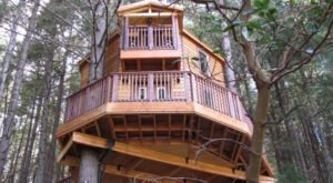 An Overnight In This Oregon Treehouse Is Simply Unforgettable