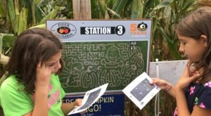 Get Lost In These 4 Awesome Corn Mazes In Delaware This Fall
