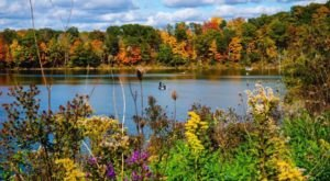 The 12 Best Places To View Fall Foliage In Ohio Before It's Too Late