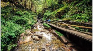 The Unrivaled Canyon Hike In New Hampshire That Everyone Should Take At Least Once