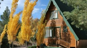 These 10 Cozy Cabins Are Everything You Need For The Ultimate Fall Getaway In Arizona