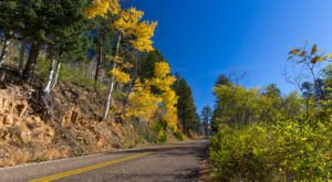 8 Country Roads In Arizona That Are Pure Bliss In The Fall
