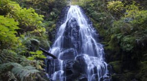 5 Gorgeous Waterfalls Hiding In Plain Sight Near Portland With No Hiking Required