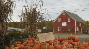It's Impossible To Drive Through This Delightful New Hampshire Town Without Stopping