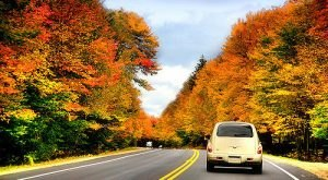 8 Country Roads In New Hampshire That Are Pure Bliss In The Fall